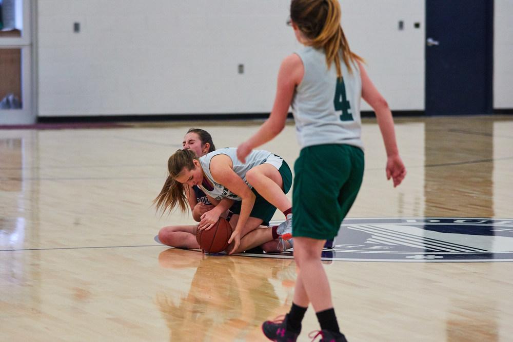 Girls JV Basketball vs. High Mowing School  1003- Dec 16 2015- Dec 16 2015 - 244.jpg