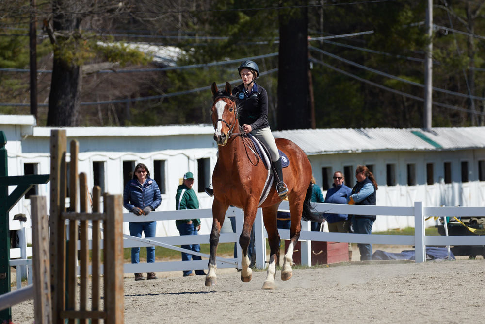 Equestrian - April 24, 2016 20356.jpg