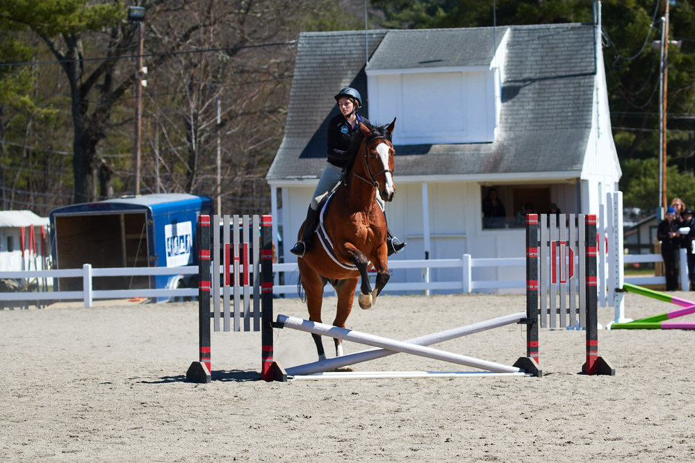 Equestrian - April 24, 2016 20378.jpg