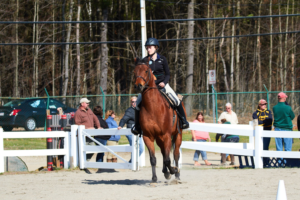 Equestrian - April 24, 2016 20529.jpg