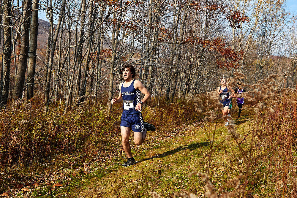 Cross Country at RVAL Championships 2016   - 57437.jpg