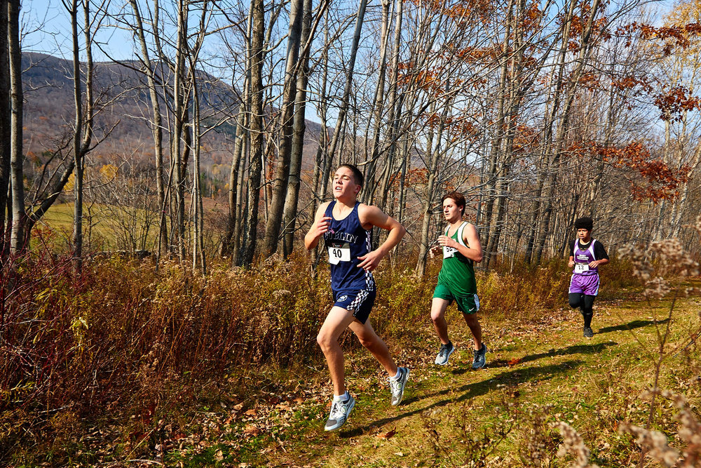 Cross Country at RVAL Championships 2016   - 57444.jpg