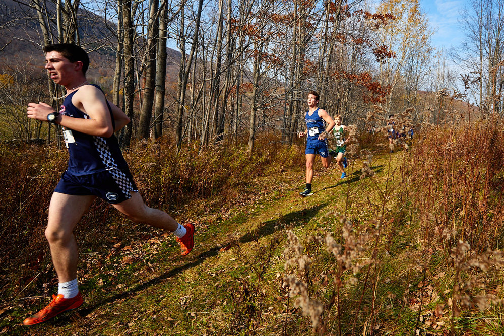 Cross Country at RVAL Championships 2016   - 57487.jpg