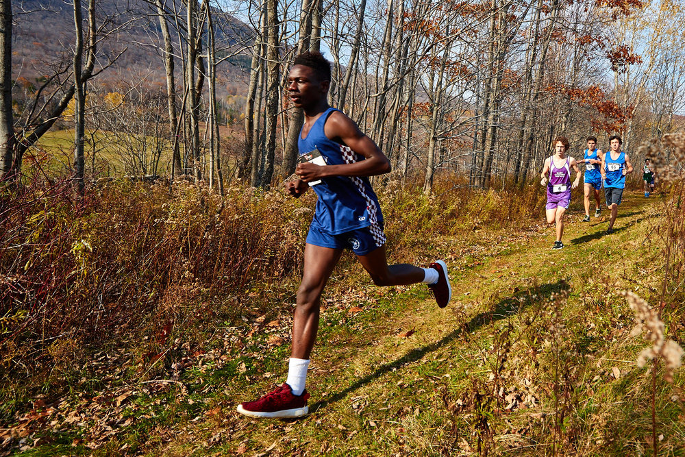 Cross Country at RVAL Championships 2016   - 57496.jpg