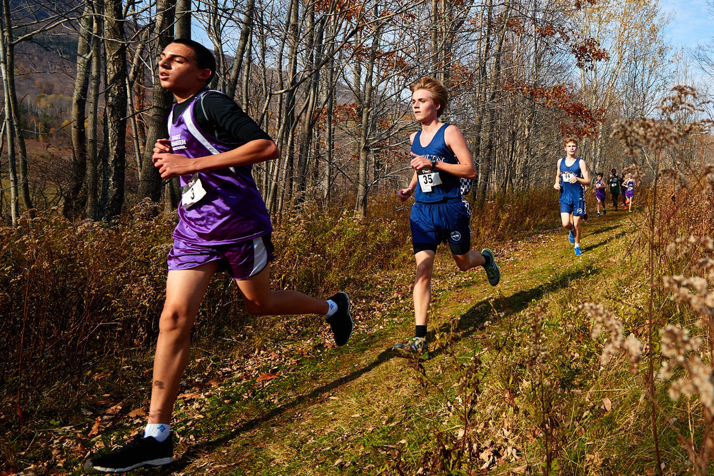 Cross Country at RVAL Championships 2016   - 57517.jpg