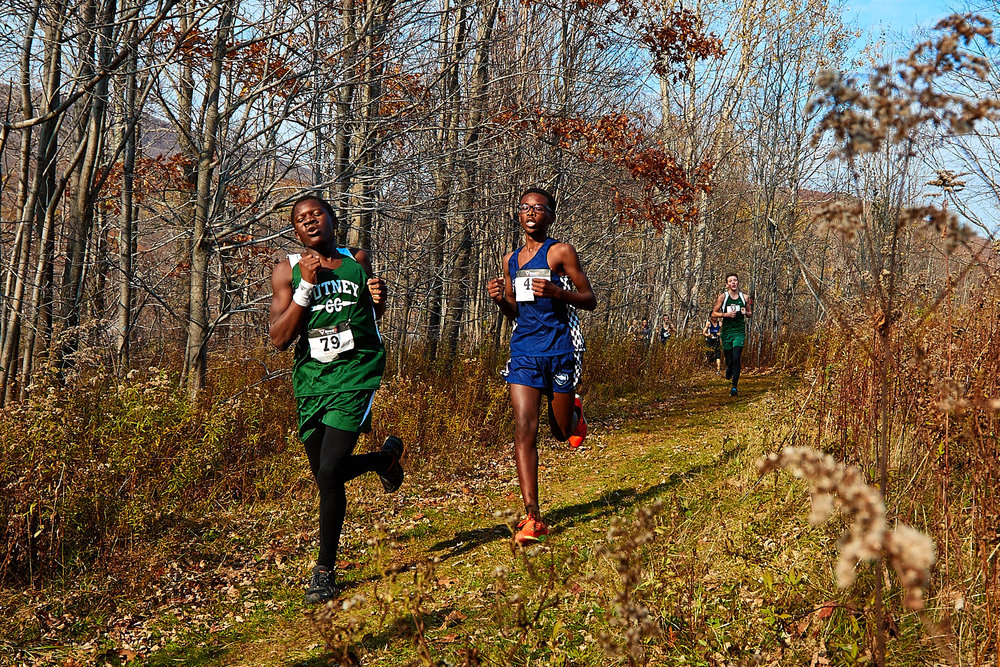 Cross Country at RVAL Championships 2016   - 57523.jpg