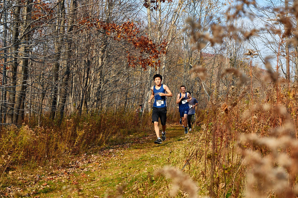 Cross Country at RVAL Championships 2016   - 57529.jpg