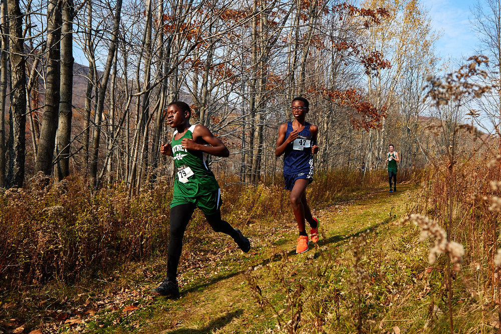 Cross Country at RVAL Championships 2016   - 57527.jpg