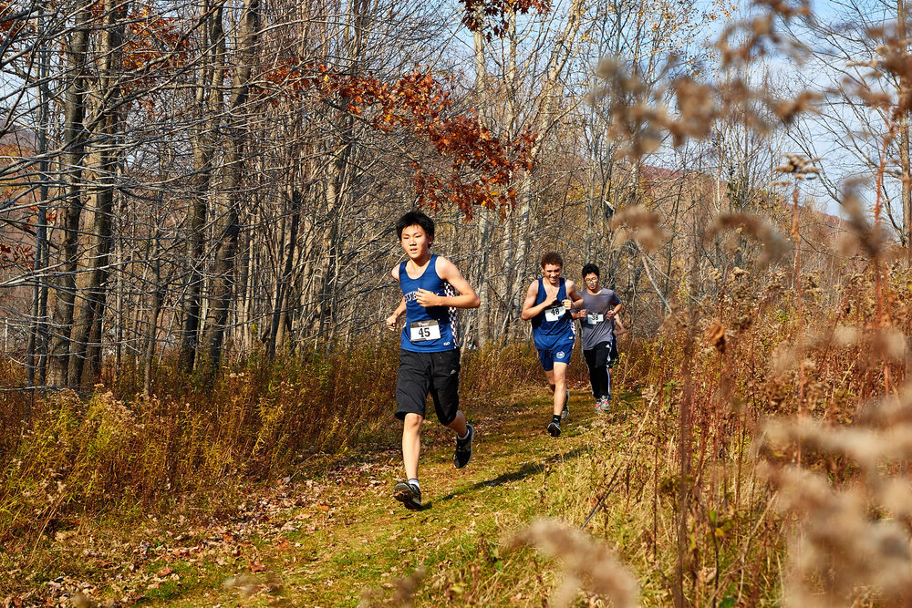 Cross Country at RVAL Championships 2016   - 57533.jpg