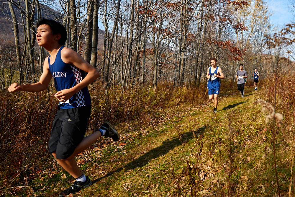 Cross Country at RVAL Championships 2016   - 57537.jpg