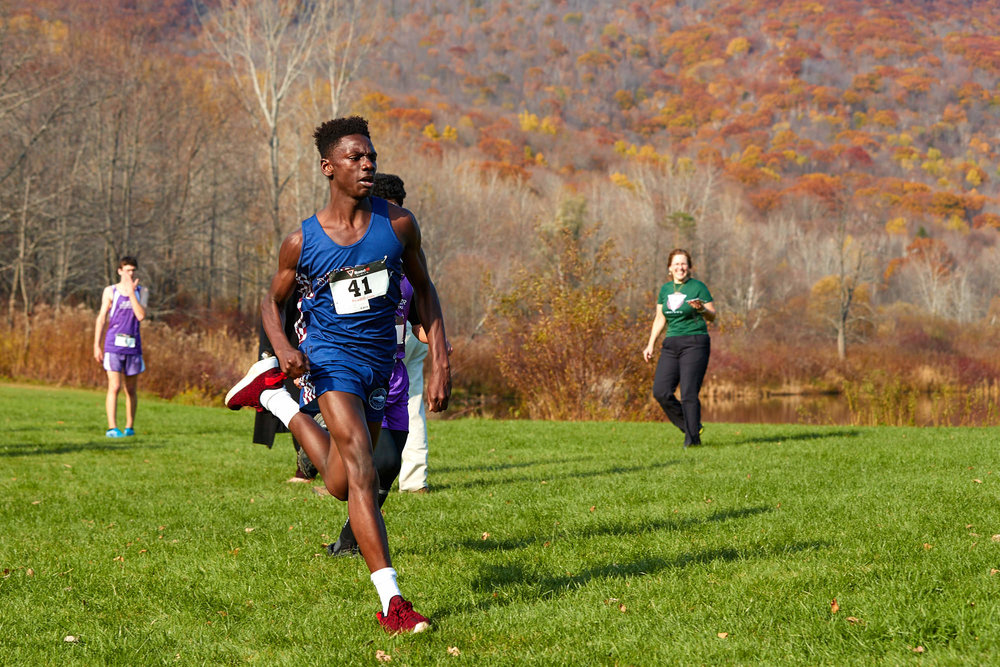 Cross Country at RVAL Championships 2016   - 57659.jpg