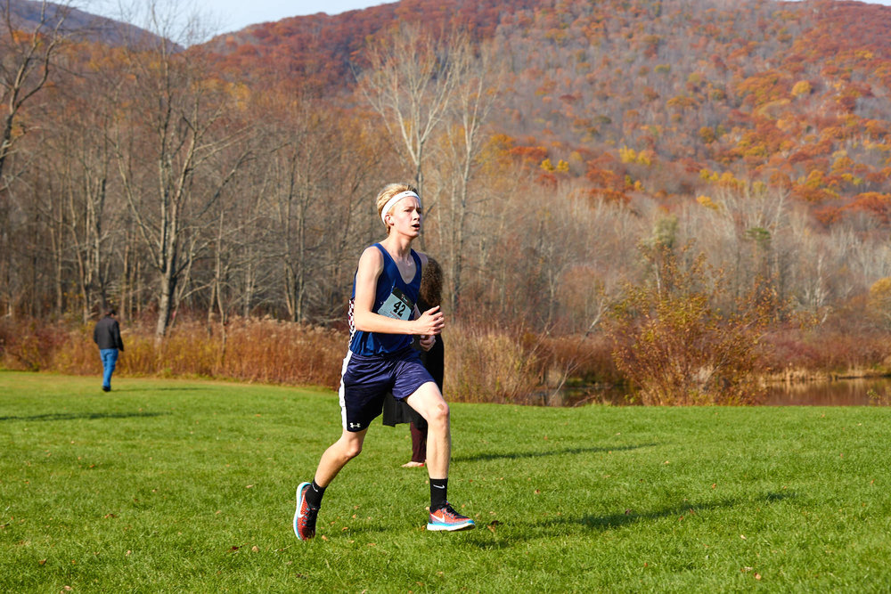 Cross Country at RVAL Championships 2016   - 57706.jpg
