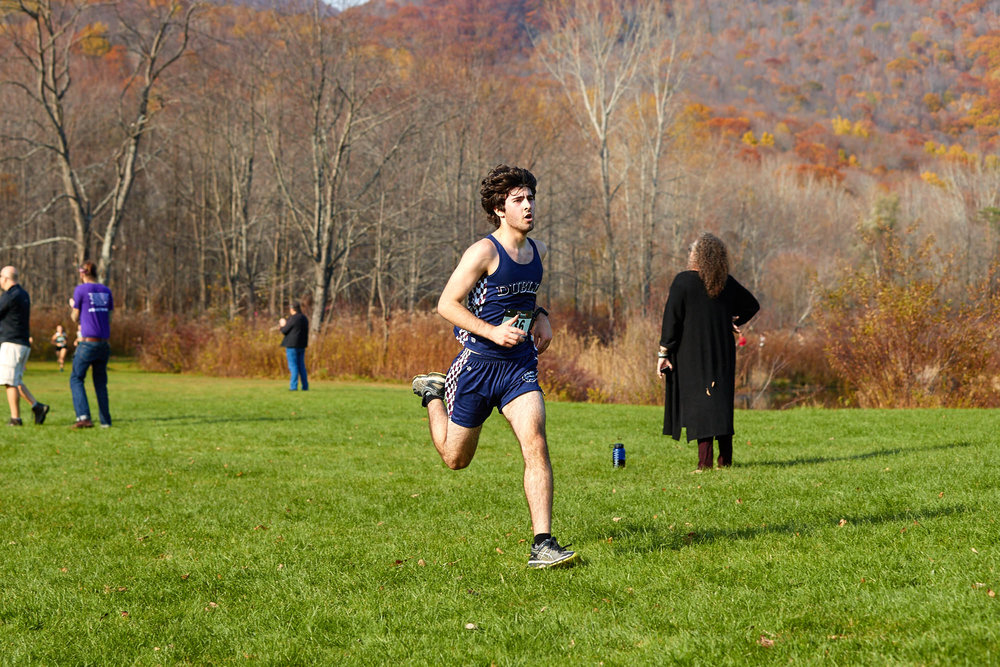 Cross Country at RVAL Championships 2016   - 57735.jpg
