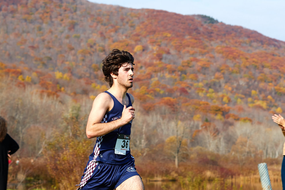 Cross Country at RVAL Championships 2016   - 57739.jpg