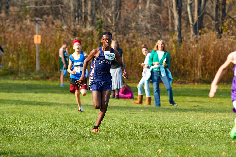 Cross Country at RVAL Championships 2016   - 57769.jpg