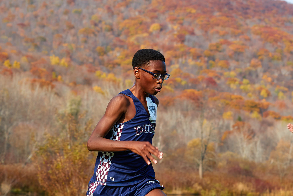 Cross Country at RVAL Championships 2016   - 57790.jpg