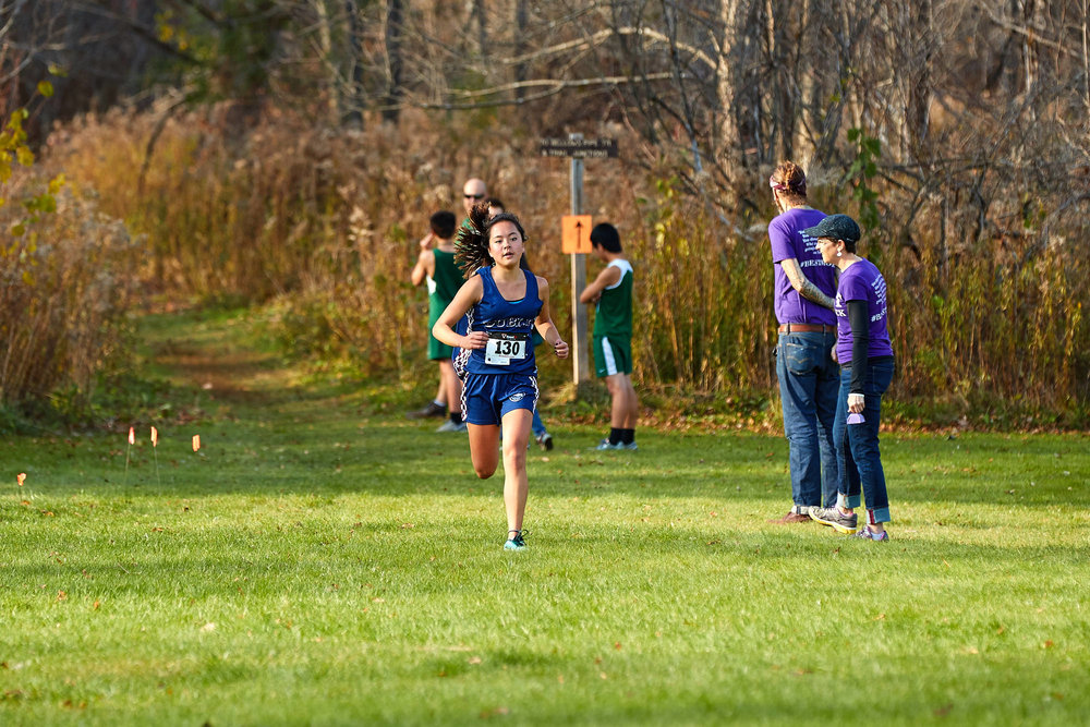 Cross Country at RVAL Championships 2016   - 57925.jpg