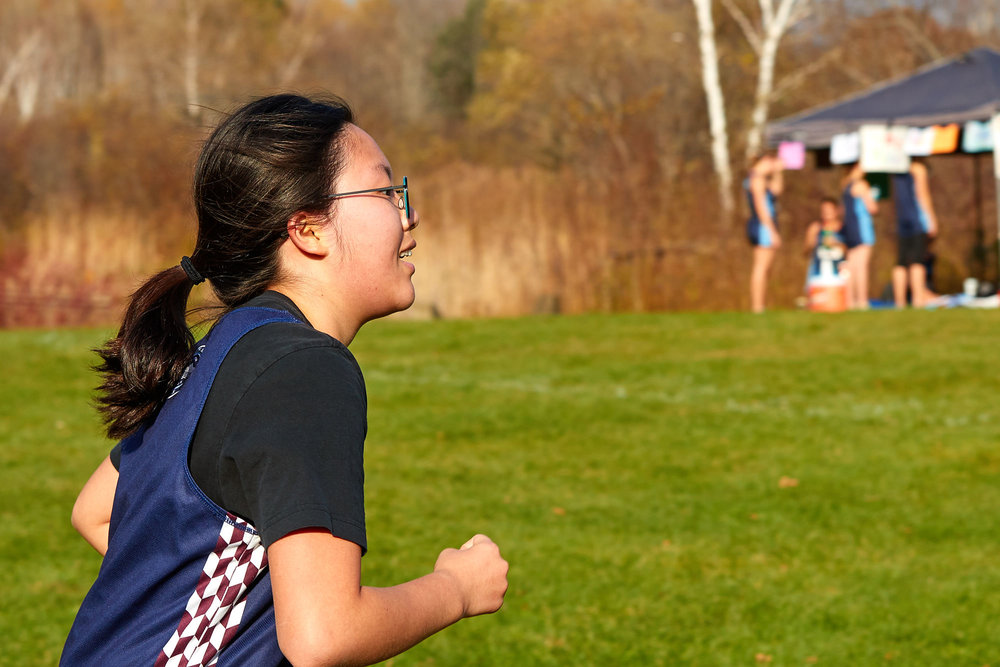 Cross Country at RVAL Championships 2016   - 58056.jpg