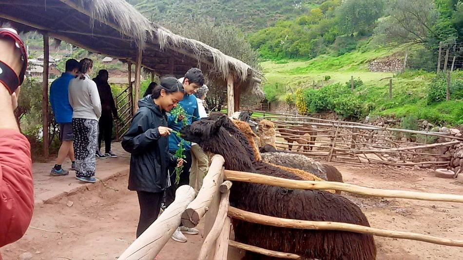Peru - March 17-18 2017_007.jpg