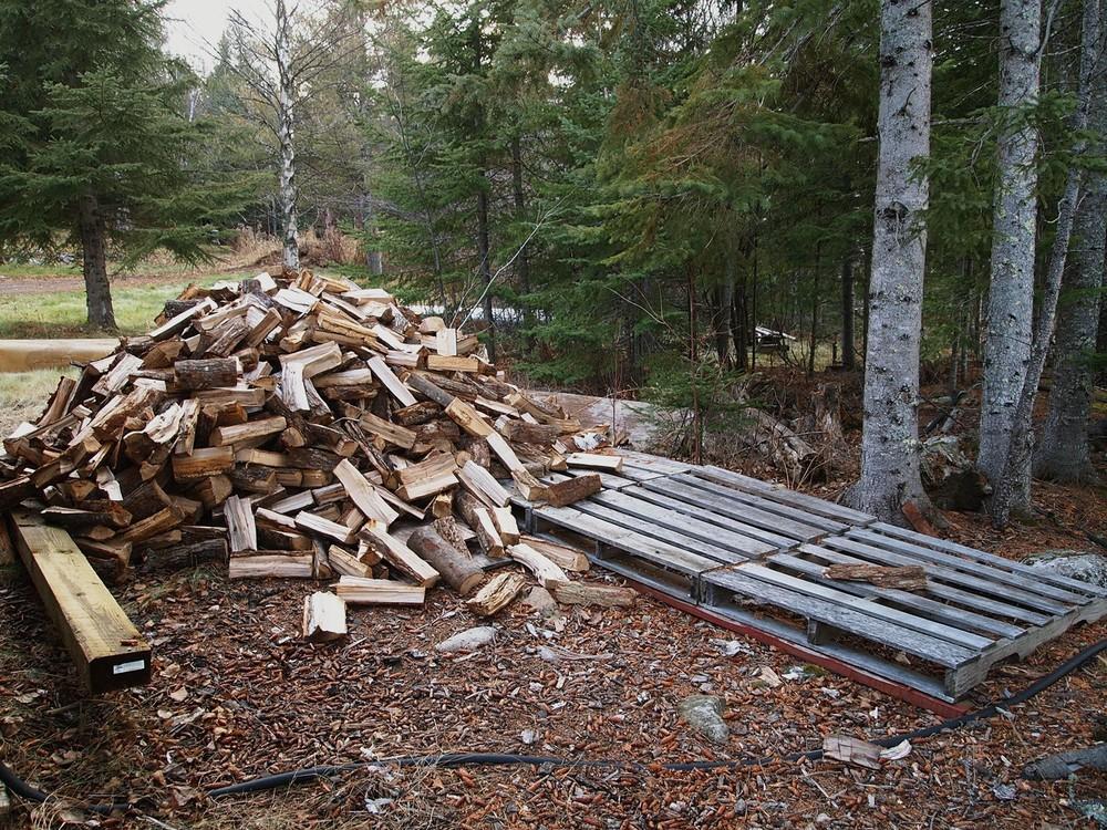 Nov 24 wood before.jpg