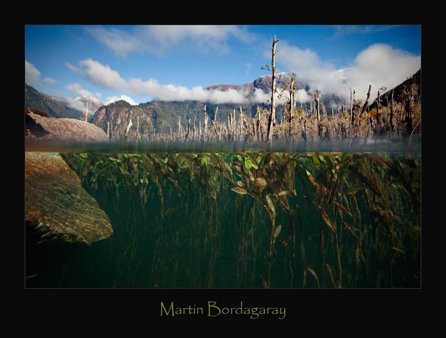 Martin_Bordagaray_2.jpg
