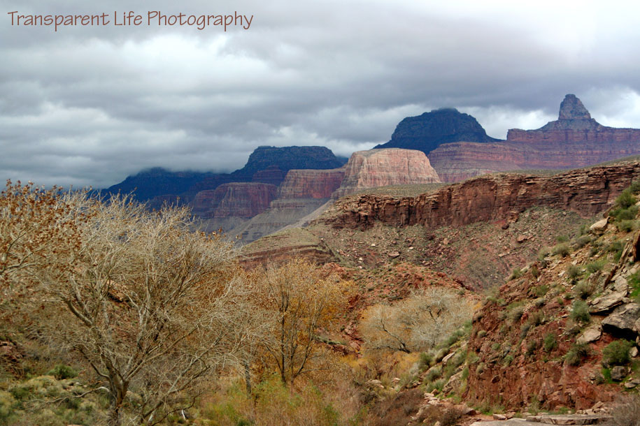 2010 Grand Canyon Trip for facebook 069.jpg