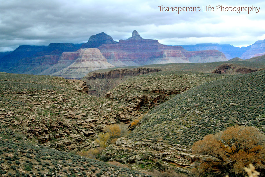2010 Grand Canyon Trip for facebook 073.jpg