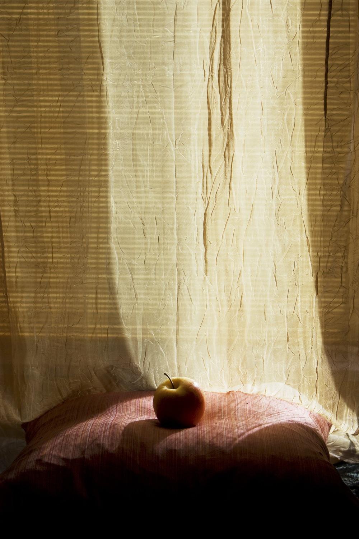 2010 apple.jpg