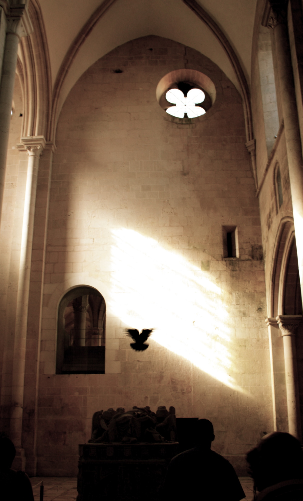 pigeon cathedral.jpg