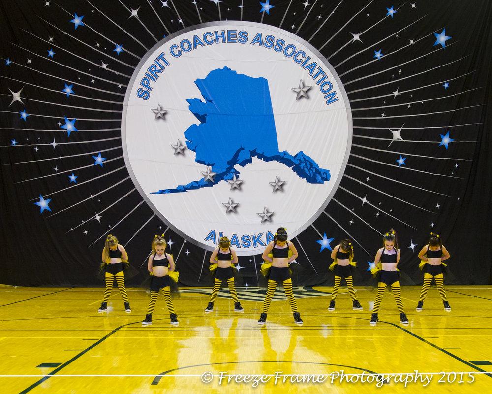 State Cheer 2015-10026.jpg