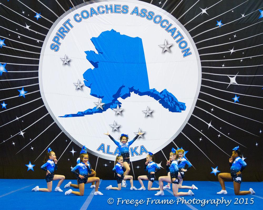 State Cheer 2015-10369.jpg