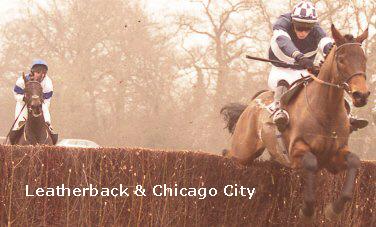 leatherback chicago city.jpg