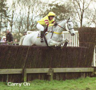 carryon horseheath.jpg