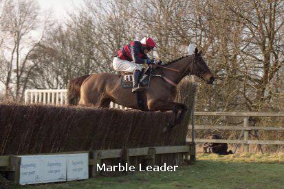 marble leader.jpg