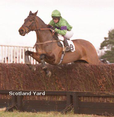 scotland yard 2010.jpg