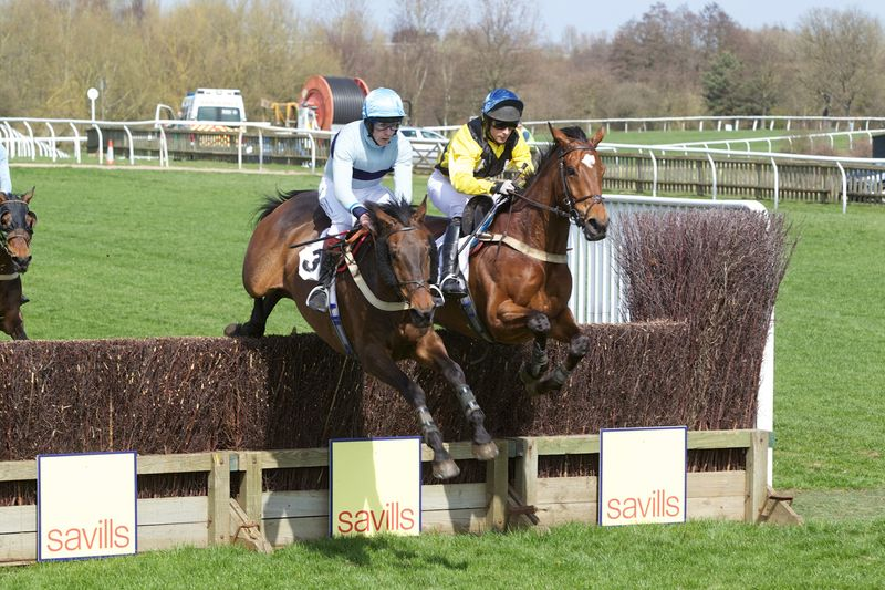 Little Nomad (Andrew Braithwaite, left) jump alongside Caulkin (David Kemp)