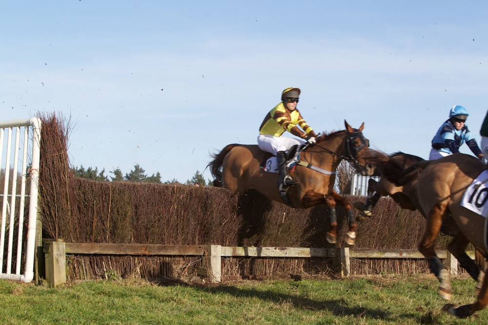 Concentrating better with blinkers applied, Cheyanwe (David Kemp) jumps tidily