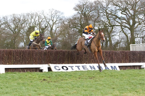 Kilbeg Opera chased by My Shamwari and American Eagle at the last
