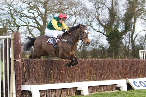 Sharp Suit en route to a second Cottenham success