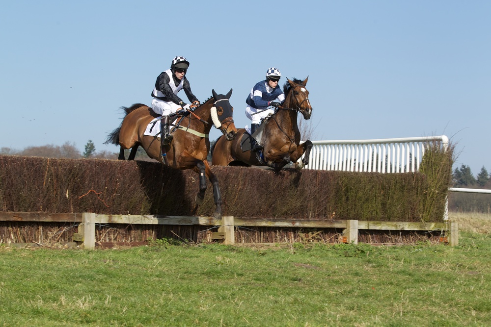 Corporate Account is mjust in front of Frankie Anson in the early stages of the Members Race