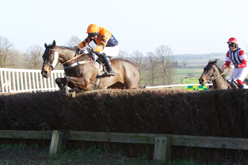 Free Run has a handy lead over Done A Runner at the last