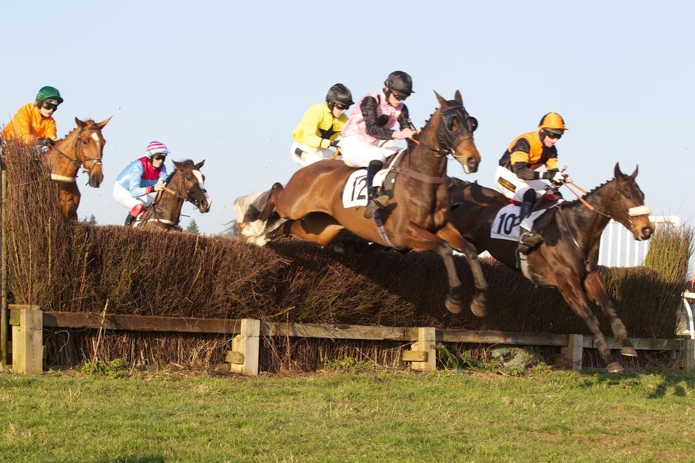 Teeiygee (12) jumps alongside Sir Ladyswell (10)