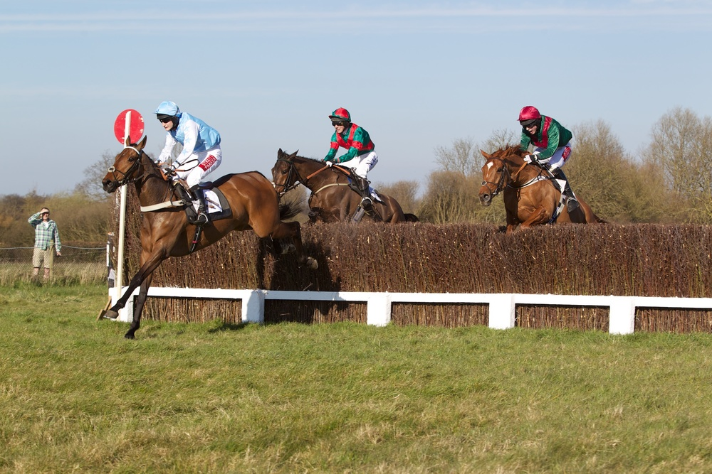 Macklin struggles over the last with New Alco (left) and Bally Wall (right) in hot pursuit