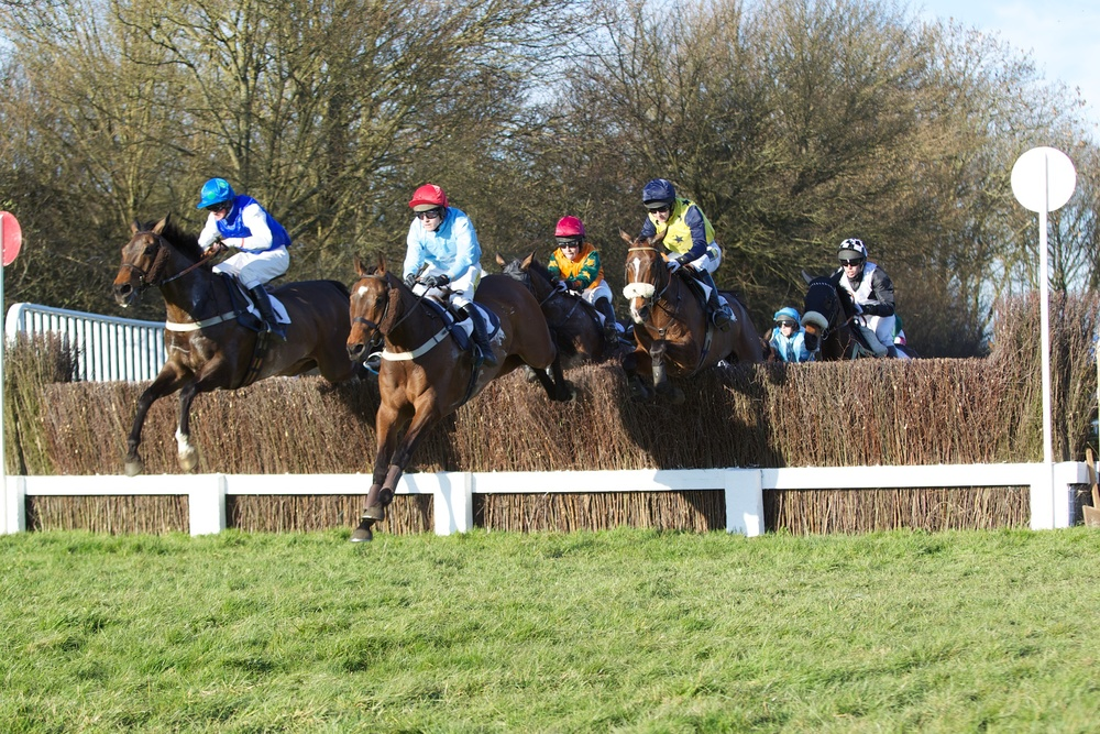 Mister Teddy (pale blue, red cap) enjoying himself out in front in the Restricted