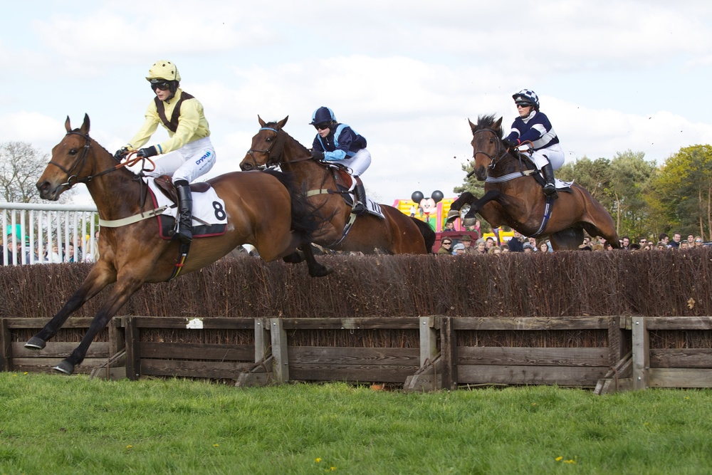 Saveiro (Bridget Andrews) en route to a second Higham success