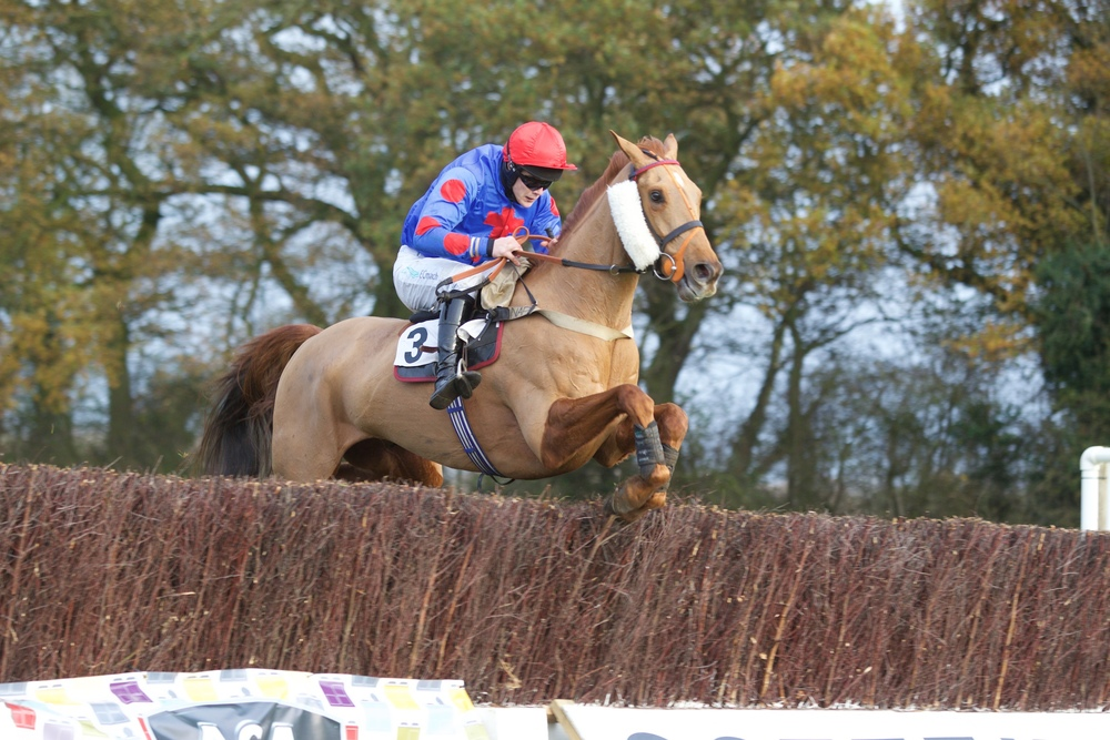 Come On You (Sam Davies Thomas) has the 3 mile Maiden at his mercy jumping the last