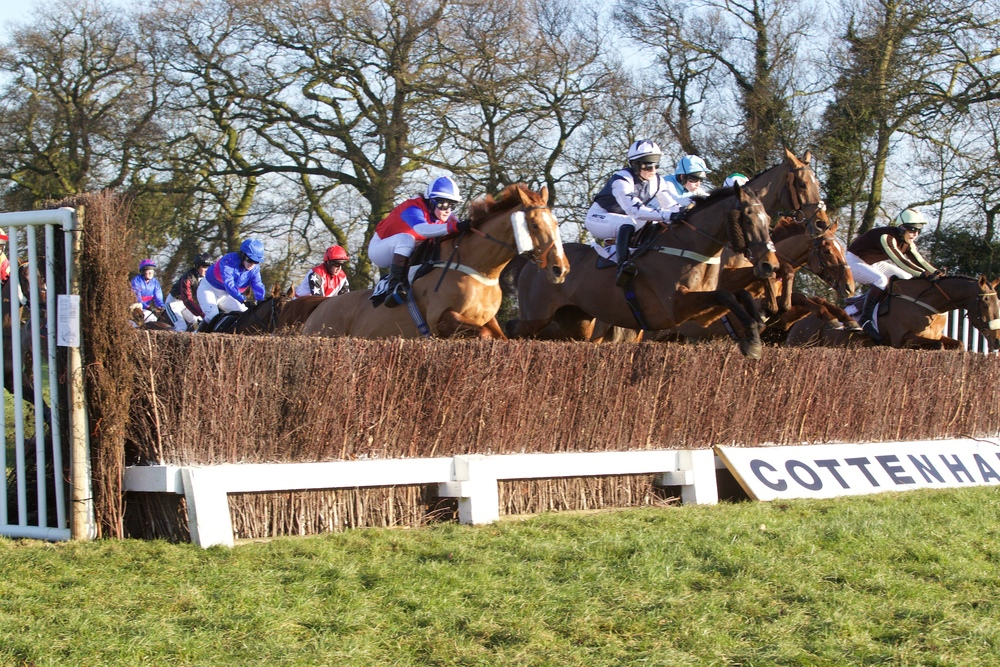 A big field contesting the Novice Riders Race