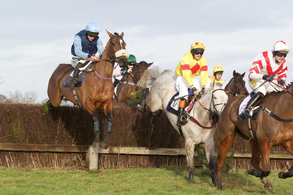 Out Of Range (left) is just behind Killurin (grey) and Emperor Arcadius at the second fence