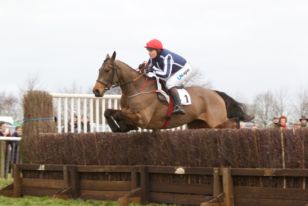 Carlanstown (Annie Bowles) jumps the last rather better than he jumped the second last