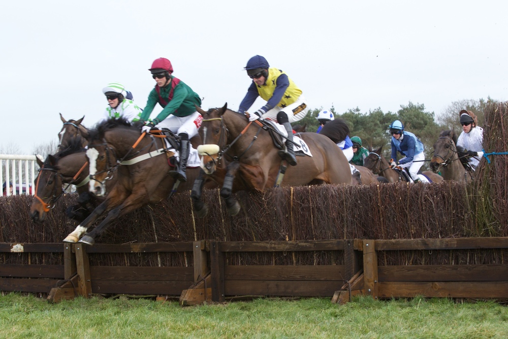 PPORA Club Race Div 1 - Stress jumps in between Conkies Lad (right) and Driftashore